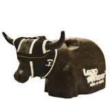 Leap Steer