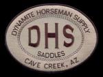 DHS logo-1_clipped_rev_1