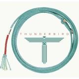 THUNDERBIRD_540x540